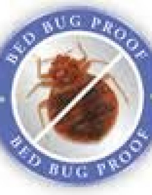 Cove Base Bed Bugs