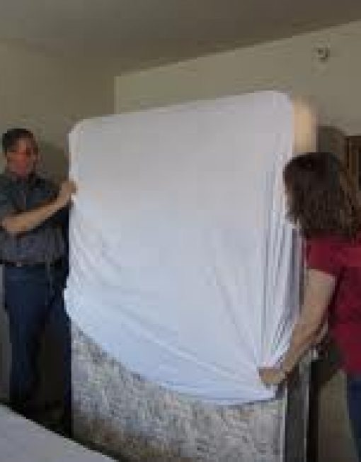 Dust Mite Bed Bug Mattress Protector