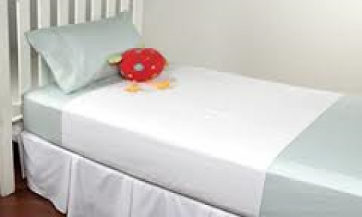 Bedwetting And Incontenence Linen Protector